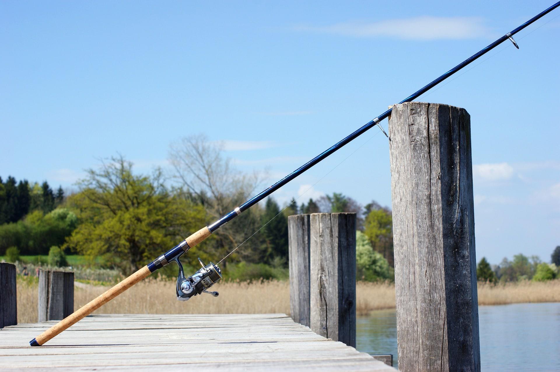 Canne à pêche : comment la choisir ? Les meilleurs modèles