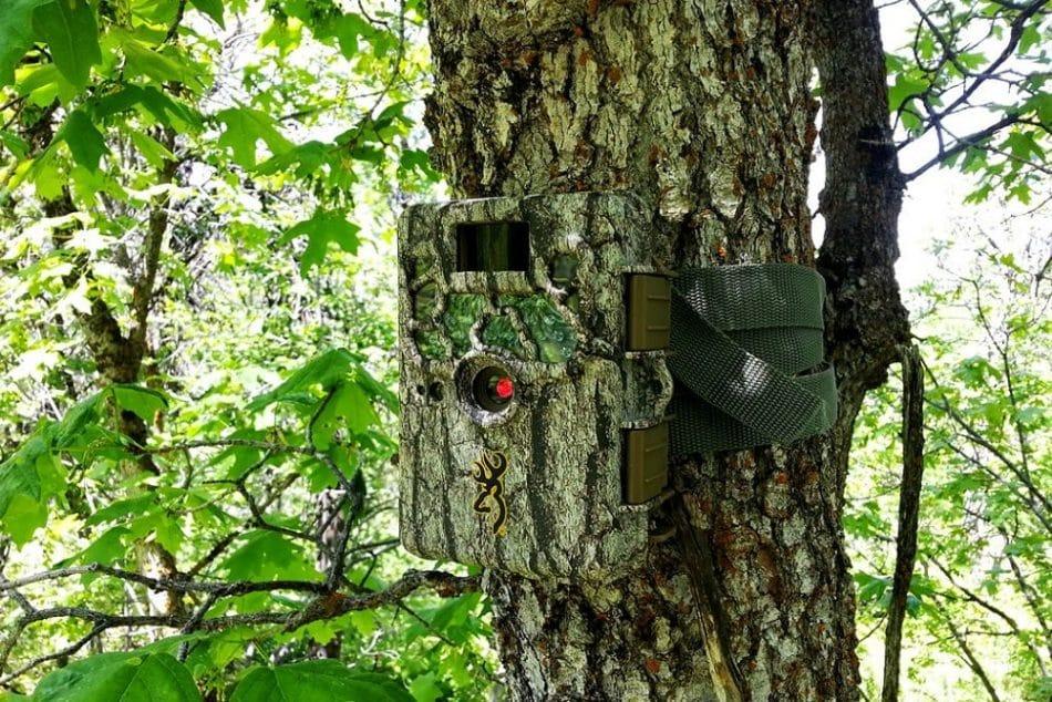 choisir meilleure camera de chasse