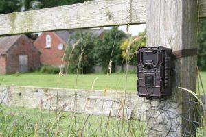 camera de chasse bushnell trophy cam