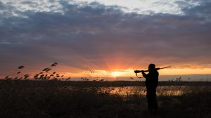 acheter carabine chasse